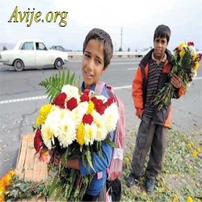 شرایط ثبت نام امریه بهزیستی شیراز